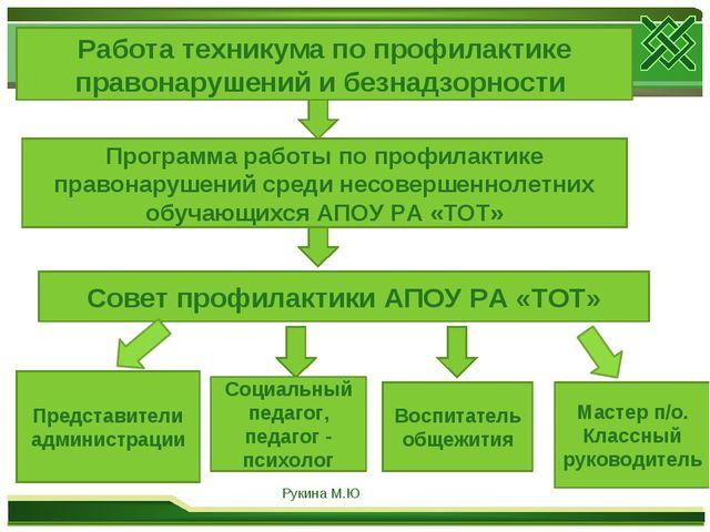 Работа техникума по профилактике правонарушений и безнадзорности Программа ра...