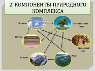 Рельеф Животный мир Вода Растительный мир Климат Почва