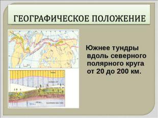 Южнее тундры вдоль северного полярного круга от 20 до 200 км.