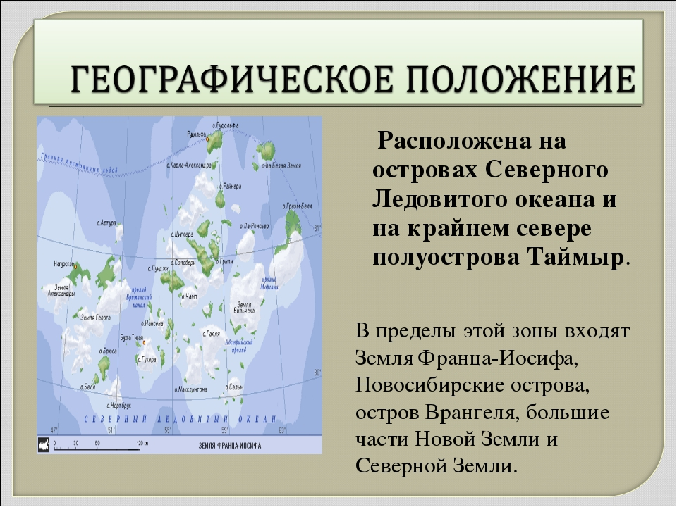 Расположена на островах Северного Ледовитого океана и на крайнем севере полу...