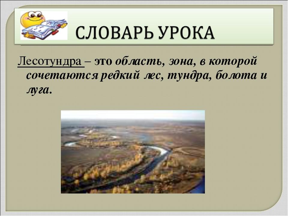 Лесотундра – это область, зона, в которой сочетаются редкий лес, тундра, боло...