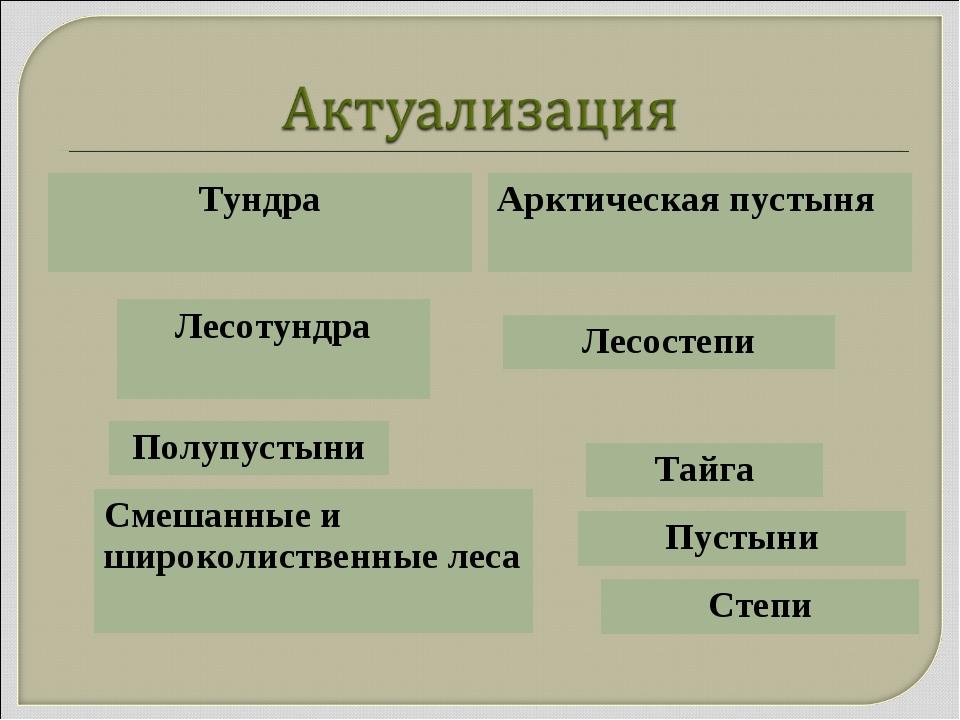Тундра Арктическая пустыня Лесотундра Тайга Смешанные и широколиственные леса...