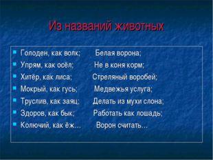 Из названий животных Голоден, как волк; Белая ворона; Упрям, как осёл; Не в к