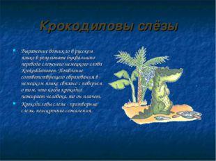 Крокодиловы слёзы Выражение возникло в русском языке в результате буквального