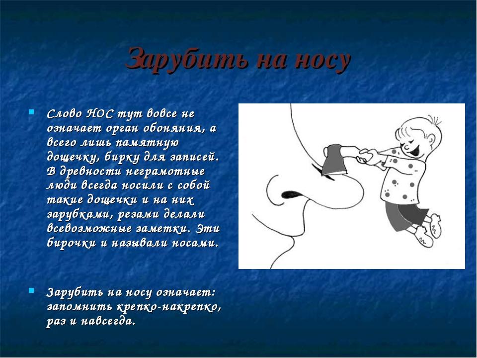 Зарубить на носу Слово НОС тут вовсе не означает орган обоняния, а всего лишь...
