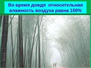 Во время дождя относительная влажность воздуха равна 100%