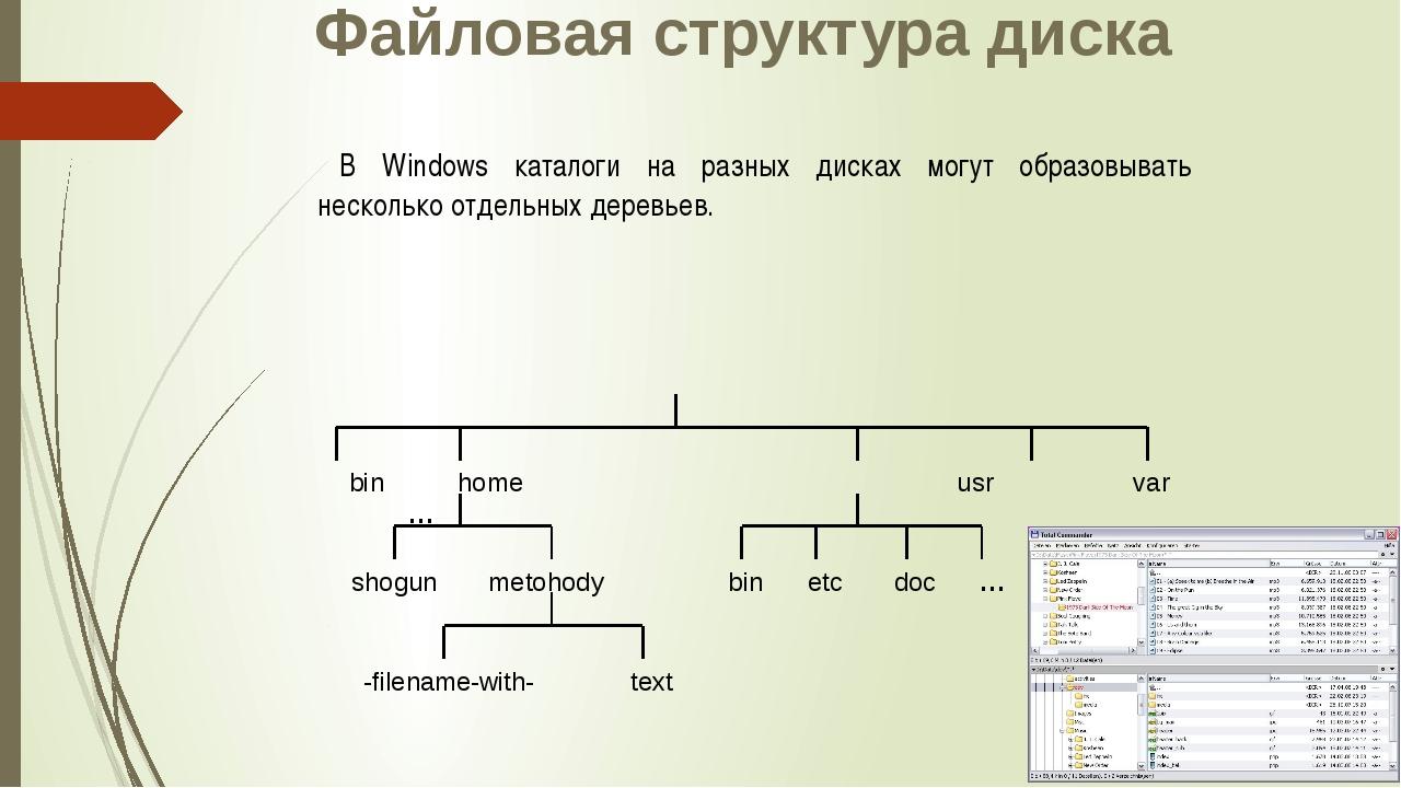 Файловая структура диска В Windows каталоги на разных дисках могут образовыва...