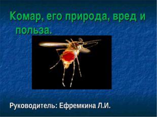 Комар, его природа, вред и польза. Руководитель: Ефремкина Л.И.