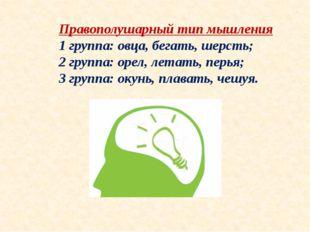 Правополушарный тип мышления 1 группа: овца, бегать, шерсть; 2 группа: орел,