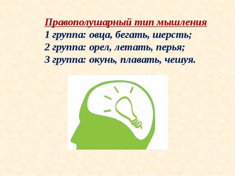 Правополушарный тип мышления 1 группа: овца, бегать, шерсть; 2 группа: орел,...
