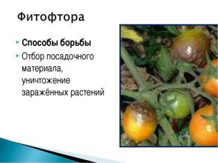 Способы борьбы Отбор посадочного материала, уничтожение заражённых растений