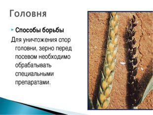 Способы борьбы Для уничтожения спор головни, зерно перед посевом необходимо о