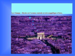 Les Champs - Elysées est l`avenue centrale est très magnifique à Paris.