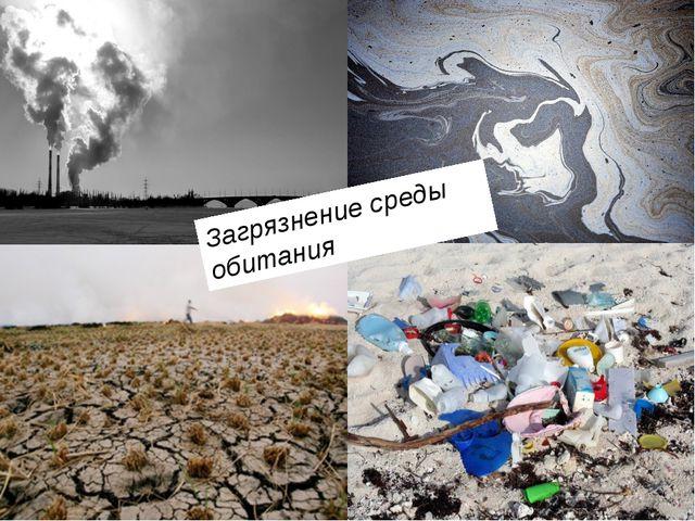 Загрязнение среды обитания