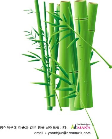 http://images.gofreedownload.net/2/green-bamboo-8597.jpg