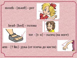head- [hed] - голова toe - [təu] – палец (на ноге) mouth - [mauθ] - рот arm -