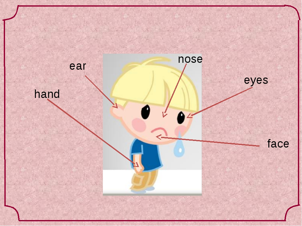 hand eyes ear nose face