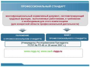 ПРОФЕССИОНАЛЬНЫЙ СТАНДАРТ многофункциональный нормативный документ, системати