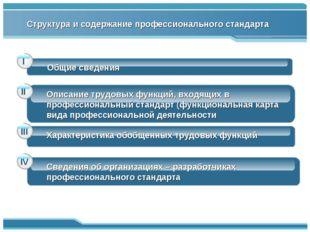 Общие сведения Описание трудовых функций, входящих в профессиональный стандар