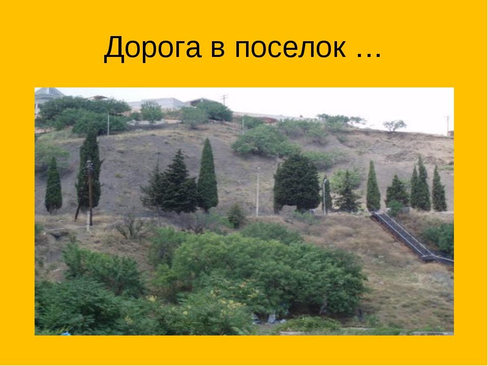 Дорога в поселок …
