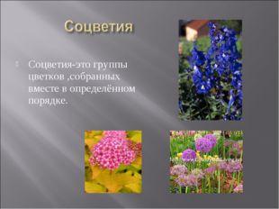 Соцветия-это группы цветков ,собранных вместе в определённом порядке.