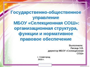 Государственно-общественное управление МБОУ «Селекционная СОШ»: организацион