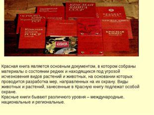 Красная книга является основным документом, в котором собраны материалы о сос