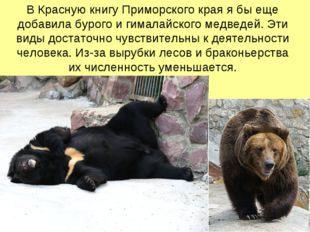 В Красную книгу Приморского края я бы еще добавила бурого и гималайского медв