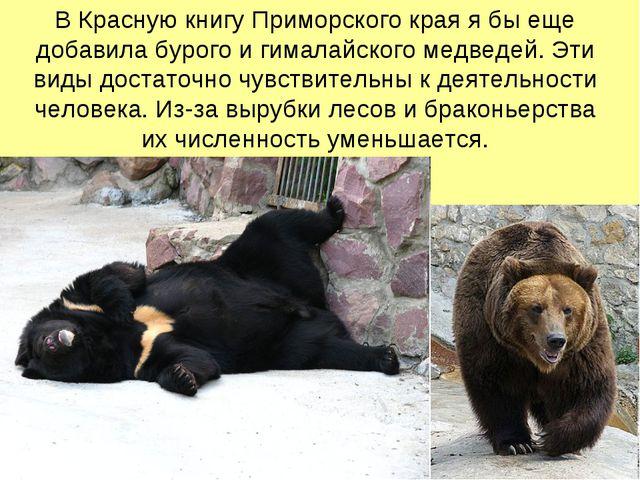 В Красную книгу Приморского края я бы еще добавила бурого и гималайского медв...