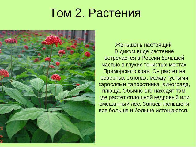 Том 2. Растения Женьшень настоящий В диком виде растение встречается в России...