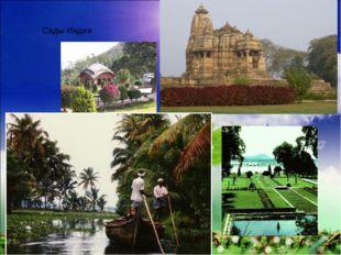 Сады Индии
