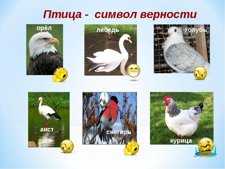 Птица - символ верности