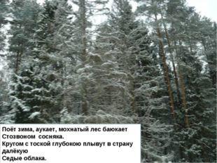 Поёт зима, аукает, мохнатый лес баюкает Стозвоном сосняка. Кругом с тоской гл