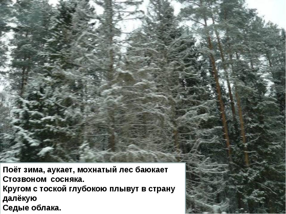 Поёт зима, аукает, мохнатый лес баюкает Стозвоном сосняка. Кругом с тоской гл...