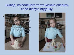 Вывод: из соленого теста можно слепить себе любую игрушку.