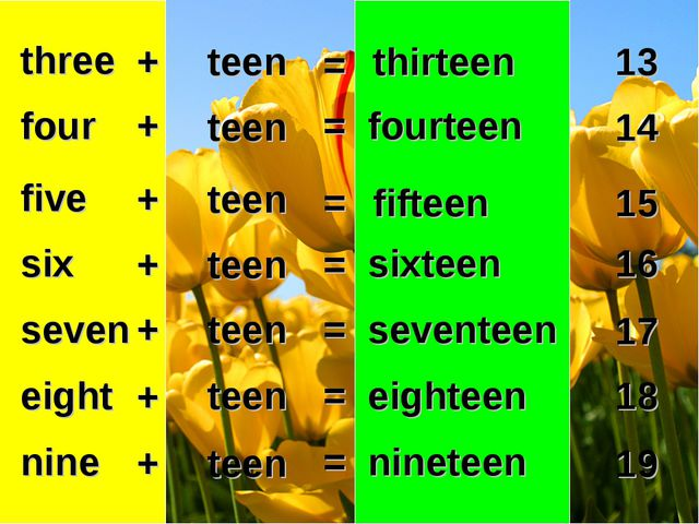 thirteen three 13 + teen = four five six seven eight nine + + + + + + teen te...