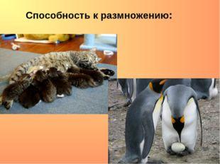 Способность к размножению: