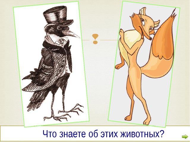 Что знаете об этих животных? 