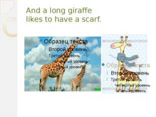 And a long giraffe likes to have a scarf.