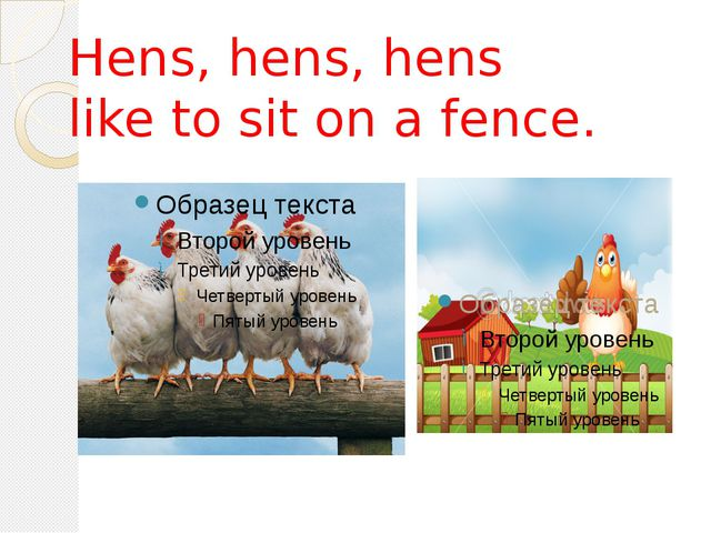 Hens, hens, hens like to sit on a fence.