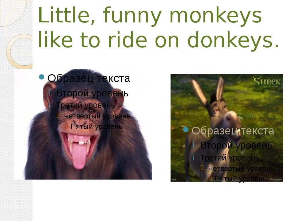 Little, funny monkeys like to ride on donkeys.