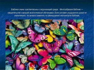 Бабочки очень чувствительны к окружающей среде. Многообразие бабочек — свидет