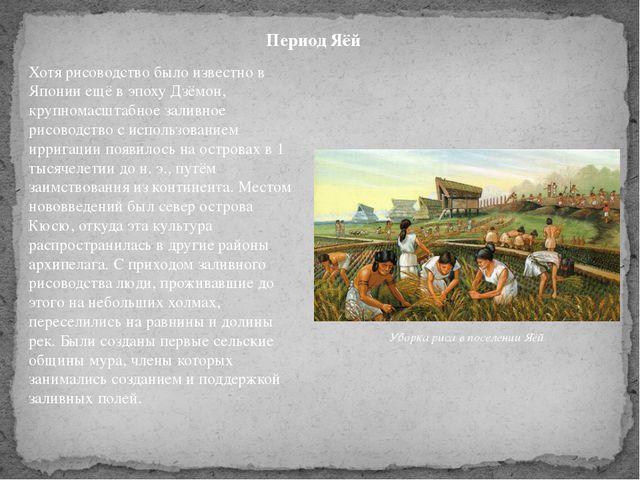 Хотя рисоводство было известно в Японии ещё в эпоху Дзёмон, крупномасштабное...