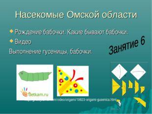Насекомые Омской области Рождение бабочки. Какие бывают бабочки. Видео Выполн
