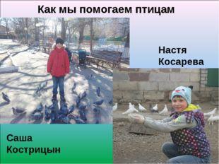 Как мы помогаем птицам Саша Кострицын Настя Косарева