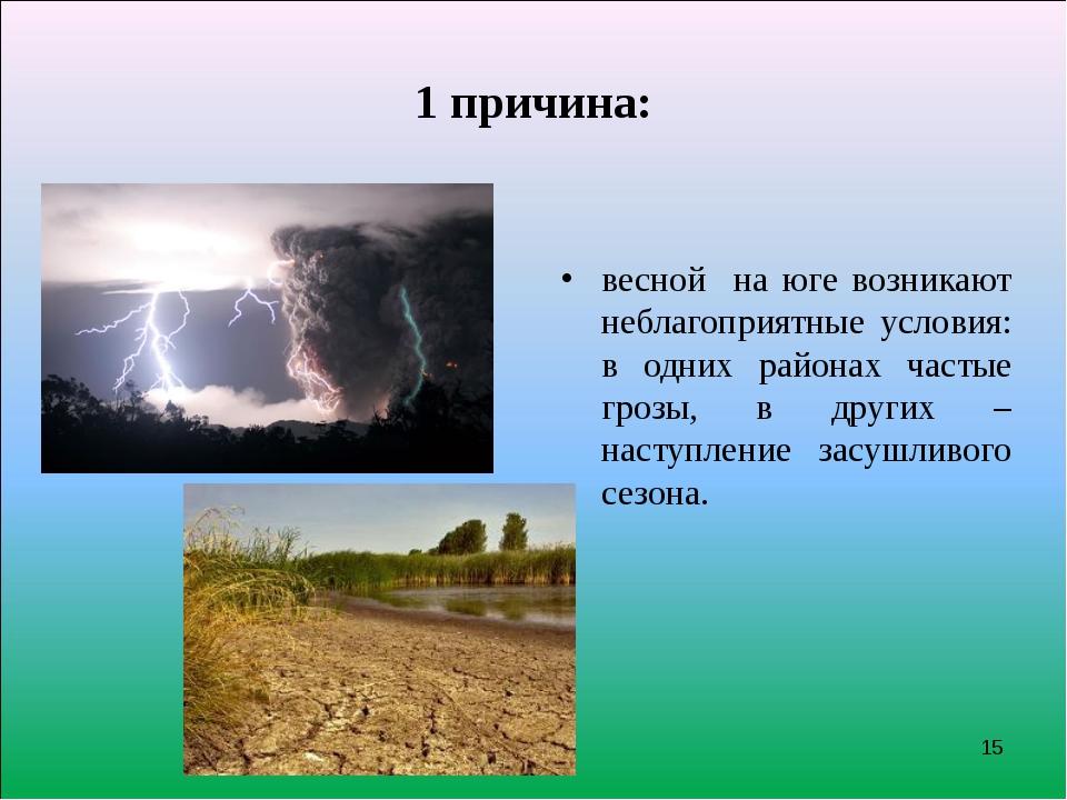 1 причина: весной на юге возникают неблагоприятные условия: в одних районах ч...