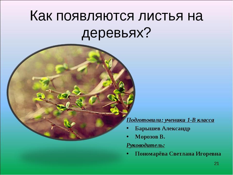 Как появляются листья на деревьях? Подготовили: ученики 1-В класса Барышев Ал...