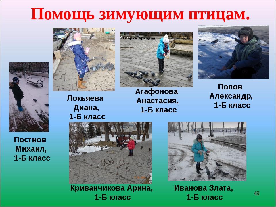 * Помощь зимующим птицам. Постнов Михаил, 1-Б класс Локьяева Диана, 1-Б класс...