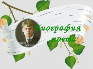 Биография поэта