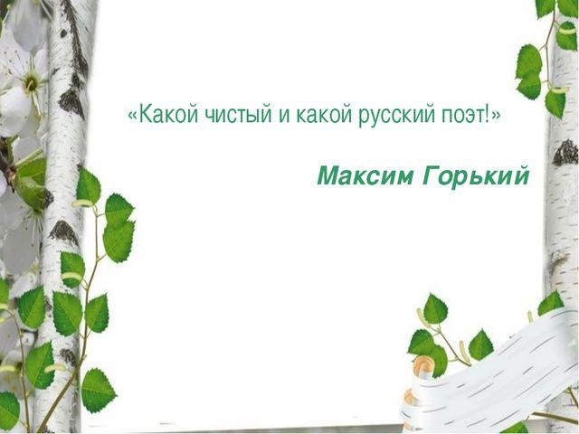 «Какой чистый и какой русский поэт!» Максим Горький